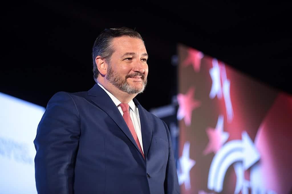 5 Times When Ted Cruz Said Something Stupid