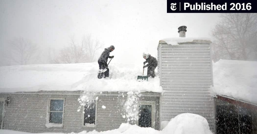 Warning! Blizzard Of 2016 Brings Gusts Of Snow And Flurries Of Socialism