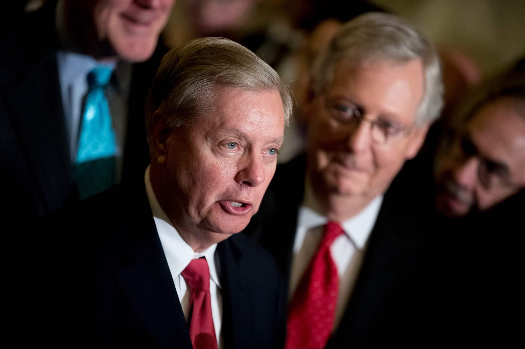 Artist Sends Senate Majority Leader Mitch McConnell Turtle Food