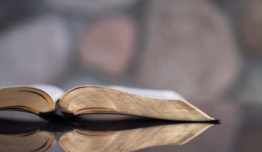 5 Verses That Prove The Bible Supports Abortion Rights