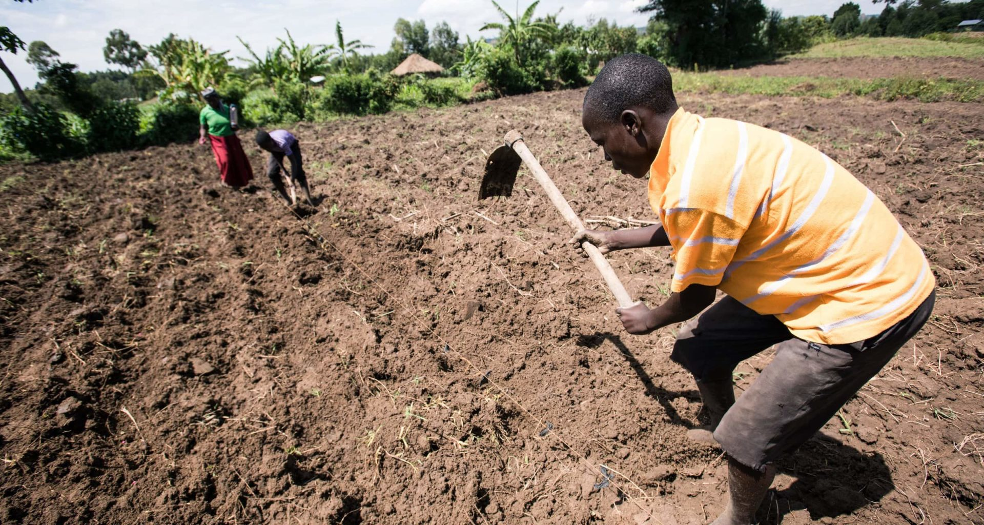 Climate Change Demolishes Farming In Africa Millions Threatened With Starvation