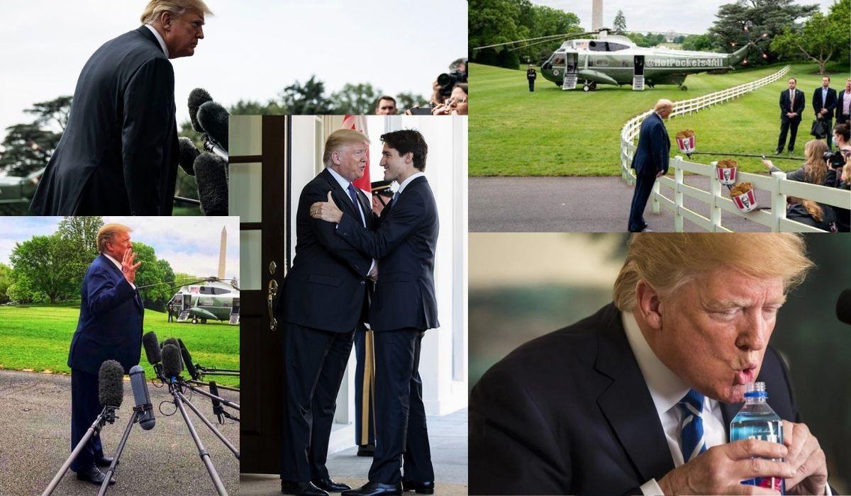 Donald Trump Gifs