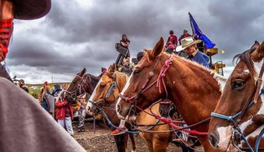 Is DAPL Really Dead Disturbing Press Release From Energy Company Means We Can't Give Up