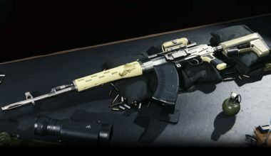 State Rep. Needs Only Two Things To Purchase Assault Rifle Online Jack, And St