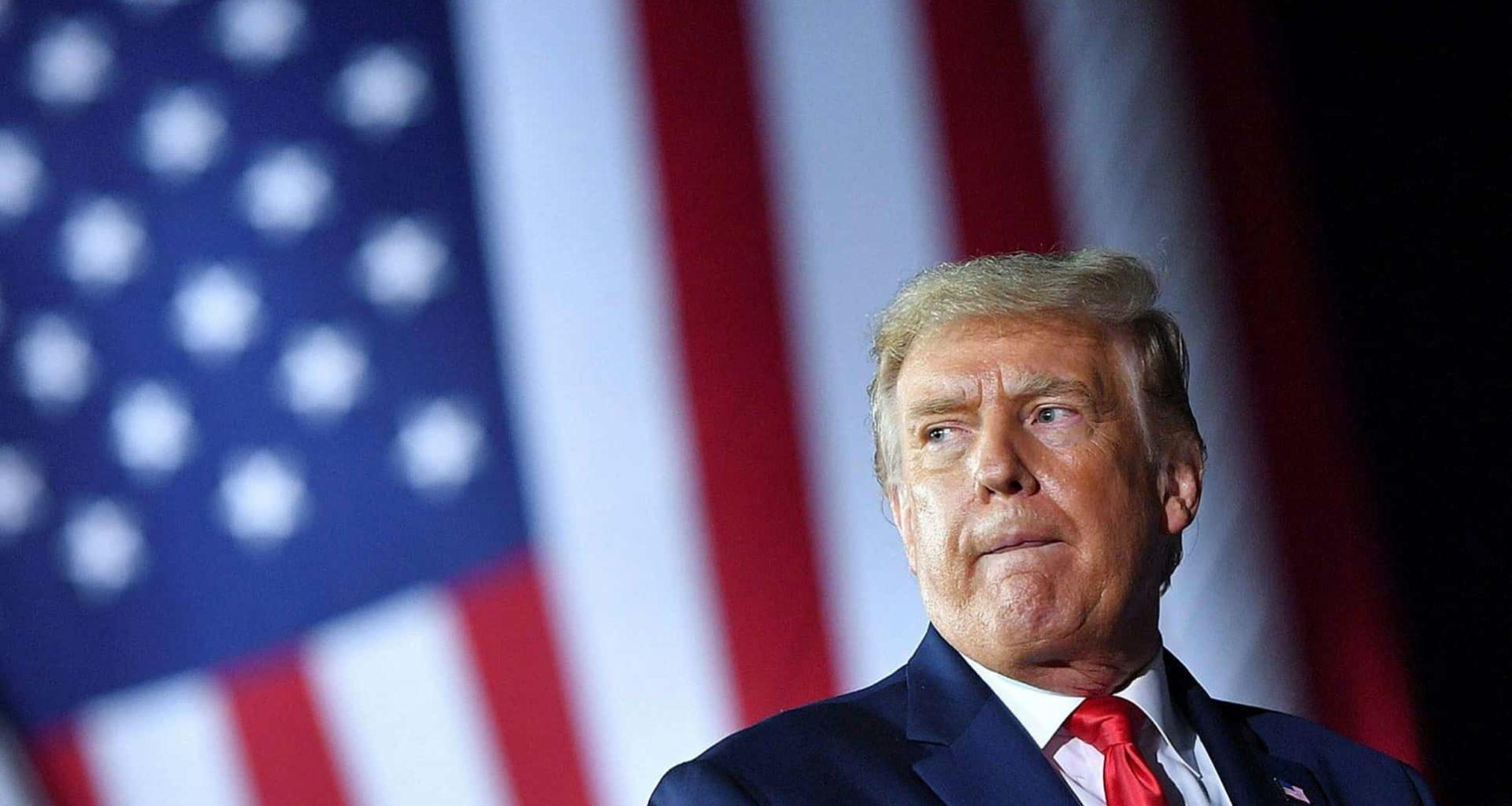 Newt Gingrich: Trump Should 'Close Down' The Legitimate Press